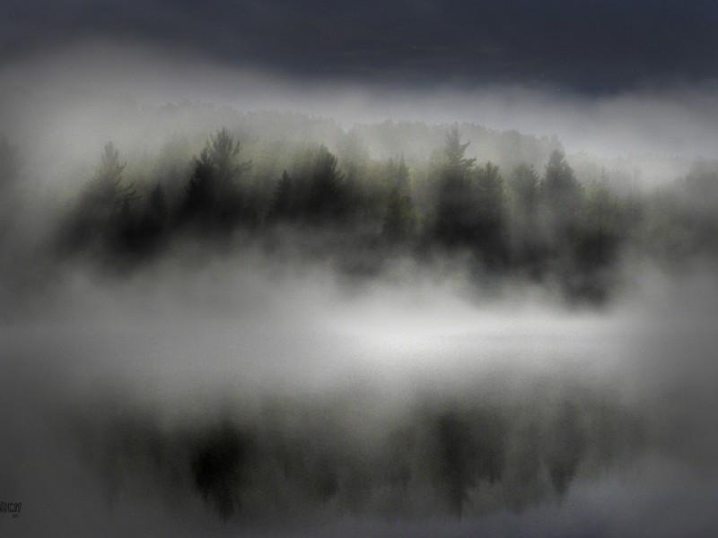 au clair de la brume