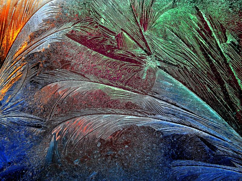 plumes de cristal